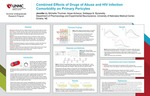 Combined Effects of Drugs of Abuse and HIV Infection Comorbidity on Primary Pericytes